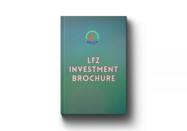 LFZ Investment Brochure